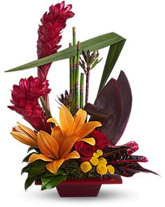 Teleflora's Tropical Bliss Flower Arrangement - Teleflora