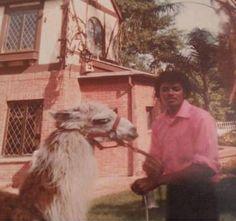 Encino 1980s