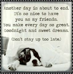 Image result for Funny Goodnight