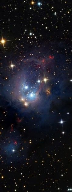 ♥ NGC 7129 Is A Rosebud-shaped Reflection Nebula located 3300 ly away in the constellation Cepheus. A young open cluster is responsible for illuminating the surrounding nebula. Wikipedia