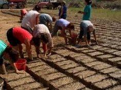 Making cob bricks to build a cob house.