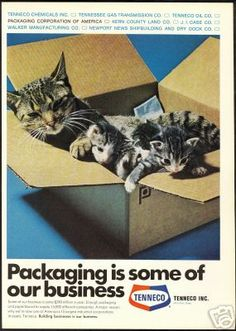 Tenneco ad, mother cat and kittens in box (1969)