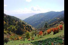 Türkiye'nin sonbahar güzelliği...