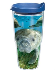 Manatee Tervis Tumbler!!!! I love Tervis and Manatees so of course I already have one of these!!!!!