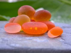 While living in Puerto Rico we collected a lot of orange sea glass. We have also found this ultra rare and special sea glass while beachcombing in England. Shells And Sand, Sea Shells, Sea Glass For Sale, Dark Tide, Sea Glass Colors, Sea Glass Beach, Sea Glass Jewelry, Orange, Fruit