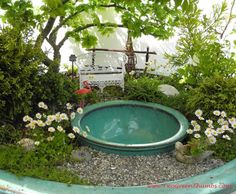 This is a version of the 'Pond-in-a-Pot' project from my Gardening in Miniature book, 2013. That's a Jacqueline Hillier Elm tree hanging over the pond. The flowers are miniature daisies.