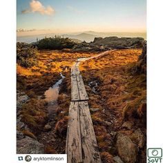Vermont  ✨ Photographer  @aryktomlinson✨  tagged by @vermontshots  #ScenesofNewEngland  Pic of the Day  11.07.15 ✨ C o n g r a t u l a t i o n s ✨ ---------------------------------------- #scenesofVT  #stoweVT #igvermont #vtphotos #vermont_potd  #goldenhour #mountmansfield #summit  #vermont_fallfoliage  #vermont_explore #expl...