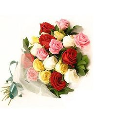 20 Colourful Roses