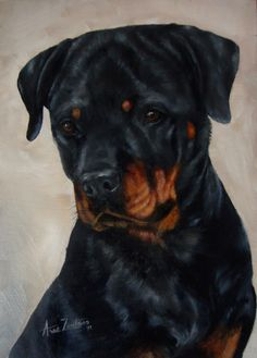 Rottweiler..Oil painting..Anne Zoutsos