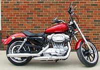 Harley Davidson Xl883 Superlow. Considering one of these for my next bike but want to try one for size first.