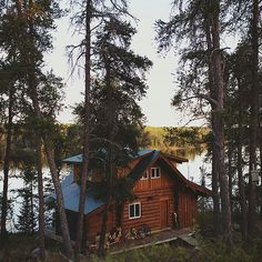 Cabin in a forest with a water view, it doesn't get much better than this Photo by @craspybakon Share your cabin adventures with us : #cabinlife We are #cabinfolk