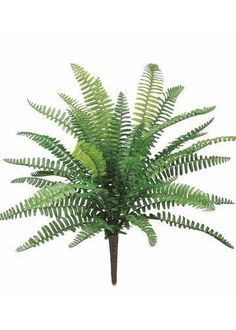 "UV Protected Outdoor Plastic Boston Fern Bush in Green - 19"" Tall"