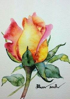 Beautiful Hand-Painted Rose ~