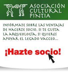 PINTIA VACCEA - SITIO WEB DEL YACIMIENTO ARQUEOLÓGICO - PADILLA DE DUERO, VALLADOLID, ESPAÑA