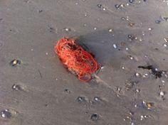 Oranje op strand