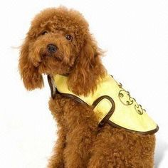 Pet Cloth, Made of Leather, Available in Yellow, Suitable for Dog