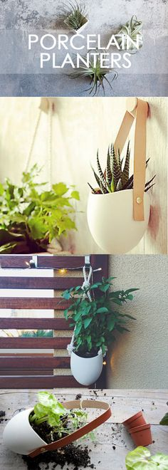 Decorate your space, big or small with a simple porcelain planter! These modern planters look great alone or in a group. Made with a waterproof glaze, they will maintain their stunning look while allowing you to keep your plants healthy and nourished!