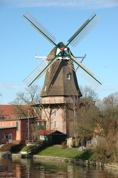 Visit Ostfriesland, and show them their roots.  The house their Oma grew up in, and all of their German cousins.