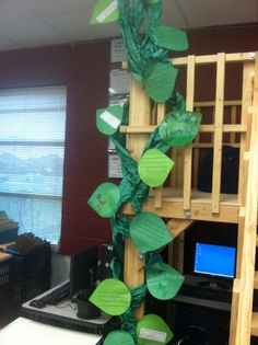 """Perspectives: What's """"growing"""" on in our classroom?"""