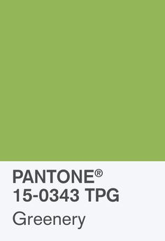 And The Pantone Color Of The Year Is. And The Pantone Color Of The Year Is. Pantone reveals its Color of the Year for 2017 — and its o. Pantone Verde, Vert Pantone, Yellow Pantone, Colour Schemes, Color Trends, Color Of The Year 2017 Pantone, Pantone Greenery, Pantone Colour Palettes, Colour Board
