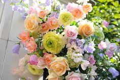 新郎新婦様からのメール 河津桜 シェ松尾松濤レストラン様へ : 一会 ウエディングの花