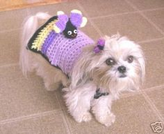 """""""Butterfly Landing"""" - sweater from DianaDesignsNY, etsy (butterfly removable :)"""