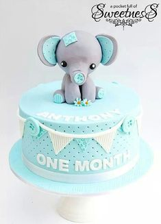Adorable elephant baby cake