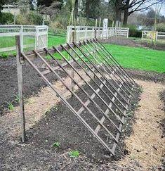 Grow Like A Pro With These Organic Gardening Tips - Urban Gardening Garden Trellis, Balcony Garden, Garden Planters, Gardening Magazines, Vegetable Garden Design, Vegetable Gardening, Natural Garden, Plantation, Edible Garden