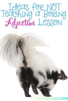 LA 21 LA 22 LA 30 Ideas so you don't have to teach a boring adjective lesson! With 17 different ideas, you are bound to find something that inspires you. I especially like the fourth idea. Adjectives Activities, Grammar Activities, Teaching Grammar, Grammar Lessons, Teaching Writing, Writing Activities, Classroom Activities, Teaching Resources, Teaching Ideas