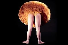 Google Image Result for http://images.nymag.com/arts/classicaldance/dance/features/tutus080519_560.jpg