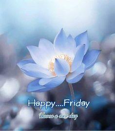 Good Morning Friday, Good Morning Texts, Good Morning Coffee, Good Morning Love, Good Morning Quotes, Good Day, Morning Pictures, Good Morning Images, Morning Pics