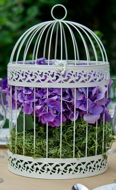 bird cage with purple flowers