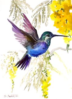 Hummingbird, original watercolor painting, 9 X 12, tropical birds birds and flowers, yellow blue green via Etsy