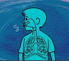Science for Kids - Grade 5 Video Lesson - Human Respiratory System #tvokids #science