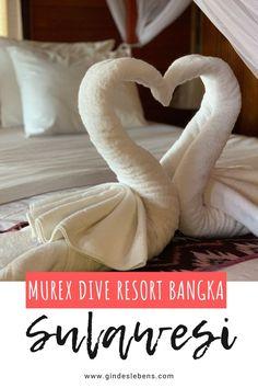 Murex Dive Resort Bangka - Tauchresort im Norden von Sulawesi Jimbaran Bali, Big Island Hawaii, Bangka, Florida Keys, Dive Resort, Koh Tao, Riviera Maya, Diving, Places To See