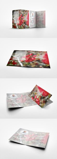 Family Cards brings an offer of cards and mementos for the special people in your life and remembrance of those who have recently departed. Memorial Cards, Special People, Red Flowers, Gift Wrapping, Memories, Create, Cover, Beautiful, Gift Wrapping Paper
