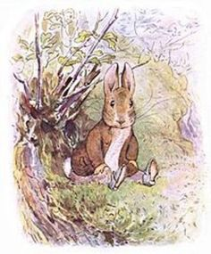 Great Big Treasury of Beatrix Potter by Beatrix Potter - audio