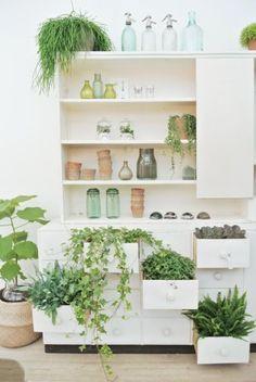 Commode / plantes & tiroir