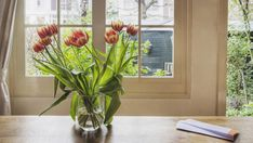 6 Ways to Bring Good Luck to Your House - Feng Shui Tips - Good Housekeeping Flowers Nature, Fresh Flowers, Year Round Flowers, Consejos Feng Shui, Tulips In Vase, Feng Shui Tips, Good Luck To You, Love Your Home, Good Housekeeping