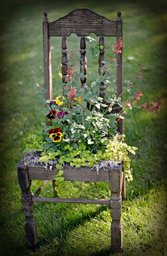 Antique Chair, via Flickr. I love flowers and this would be really neat in our urban veggie garden