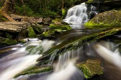 Blackwater Falls State Park Entry   WV Land Trust Special Places Nature Photo