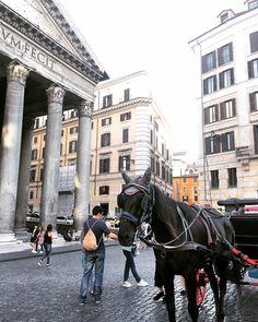 Hello mr horsie,  Follow my main account @mouchoa . .  #moudiary #photography #theworldguru #travel #igphotography #photographers #igphotoworld #travelgram #love #instagood #photooftheday  #barcelona #rome #italy http://tipsrazzi.com/ipost/1507006870530647401/?code=BTp9sOoDWVp