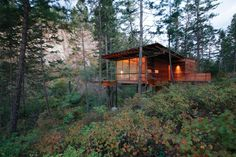Offgrid Treetop Home Floats Amid The Surrounding Forest