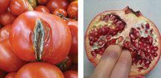8 Women Who Turned Food into Feminist Art - Stephanie Sarley, Fruit Art Videos, Artistic Photography, Photography Women, Photography Ideas, Carolee Schneemann, Marilyn Minter, Feminist Art, Fruit Art, Fruit And Veg, Food Preparation