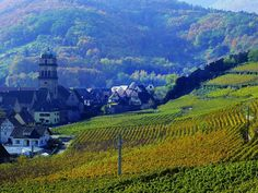 Kayserburg, Alsace-Lorraine (homeland of my grandfather's family-hope to get there someday)