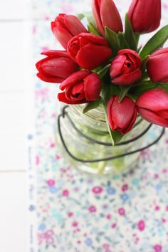 My Valentines flowers, red tulips..