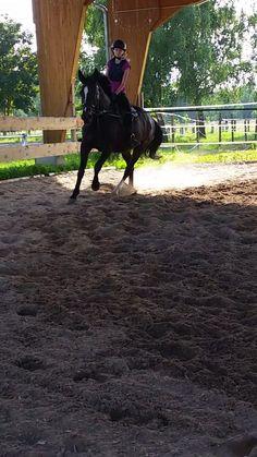 Das Glück der Erde liegt auf dem Rücken der Pferde ❤🐴❤Gundi