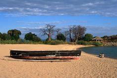 Moored fishing boat and baobab trees on Kaya Mawa Beach, Lake Malawi.