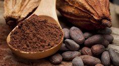 Cacao, semi di cacao, cioccolato, ricette con cacao e cioccolato, cucina