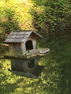 Outdoor Decor, House, Home Decor, Pictures, Plants, Nature, Animals, Garten, Homemade Home Decor